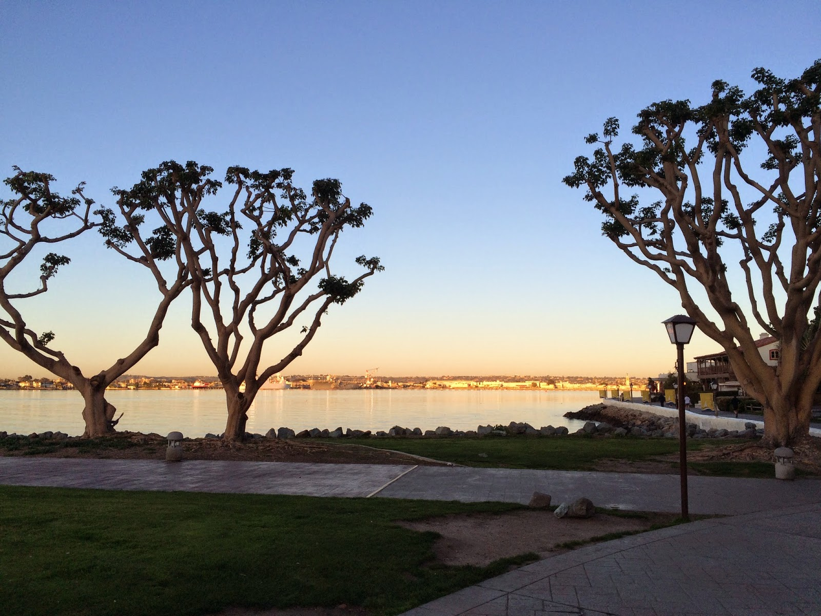 ENDO 2015: Fun In San Diego!