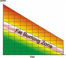 The Fat Burning Zone: Truth or Hype?