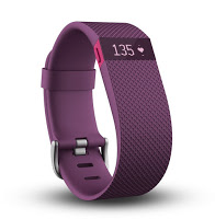 Caution FitBit HR Wearers – Don't Trust That Your Heart Rate Is Accurate!