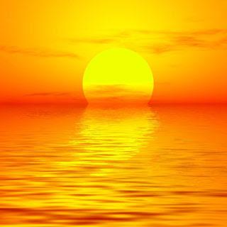 Beyond Sun & Bones: The Importance of Vitamin D Supplementation!