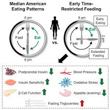 Could Intermittent Fasting Benefit Our Metabolism?