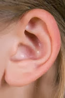 Obesity and Hearing Loss in Women