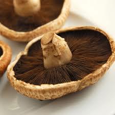 Sensational Baked Portobello Mushroom Wedges!