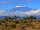 Type 1 Diabetics Climb Kilimanjaro!