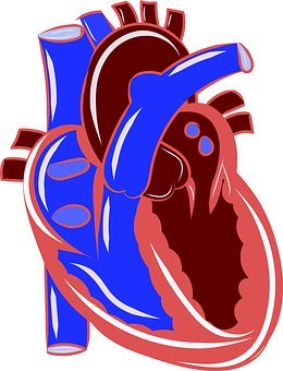 UPDATE: Cardiovascular Medications – ACE Inhibitors, ARBs, and COVID-19